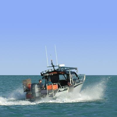 Powered By Hotaru Sport Fishing Boat - Airplane basic guide & news