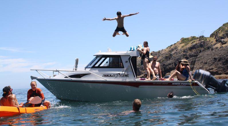 730 Sports Hardtop - White Pointer Boats : custom alloy boat builders, aluminium boats, fishing ...